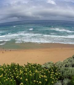 [澳大利亚游记图片] 体验农场生活,养袋鼠逗考拉,海狮追着跑,自驾墨尔本、大洋路、袋鼠岛、阿德莱德