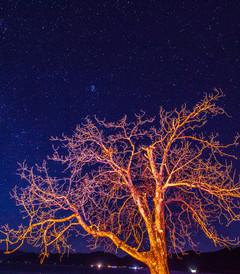 [泸沽湖游记图片] 圣诞大餐:去泸沽湖看星星,去邛海边吃烧烤
