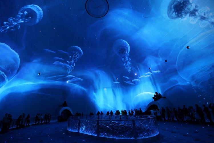 City of Dreams3