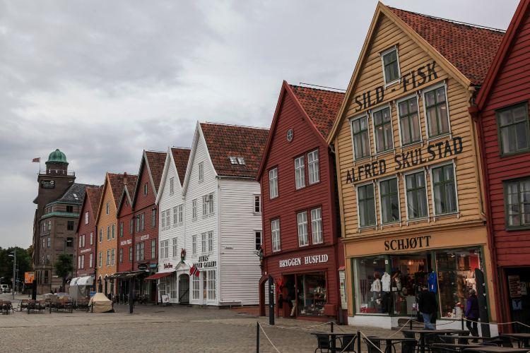 Bryggen Herringbone House1
