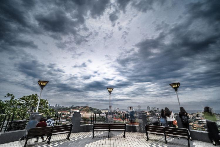 신호산 공원3