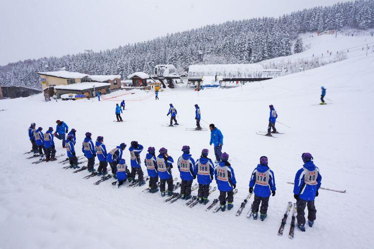 比羅夫滑雪場