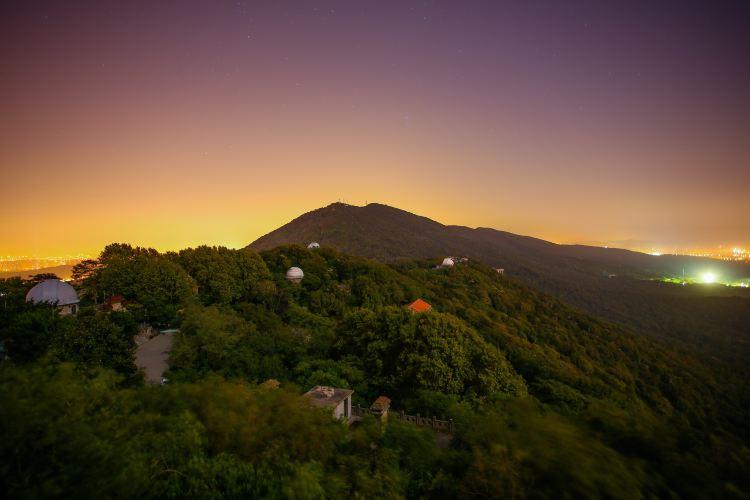 Purple Mountain Observatory1