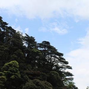 乳源游记图文-雨后天晴的快乐五一南岭游