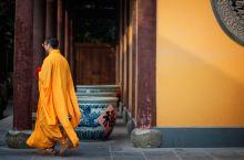 送给佛系旅行者 l 手捧莲花静观天下,这些寺庙了解一下吧