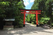 9寻找宫崎骏 鹿儿岛之行 去雾岛,看神宫(雾岛神宫、神话里的公园、丸尾温泉乡)-->  这次行程被我