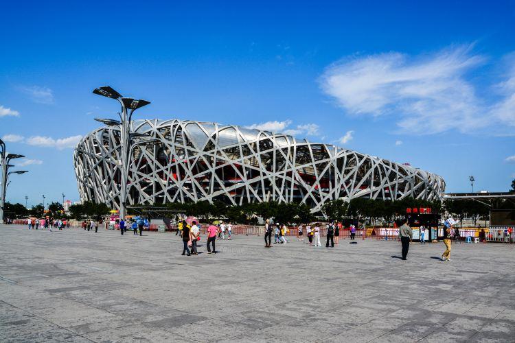 Bird's Nest (National Stadium)2