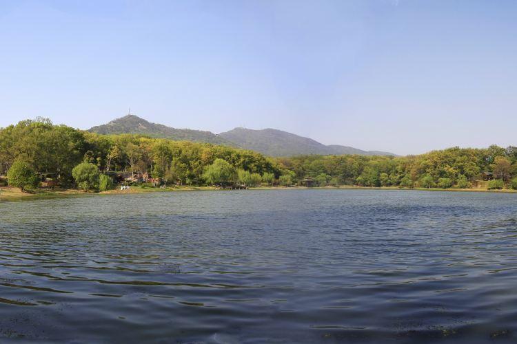 비파호 공원1