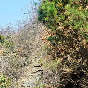 石柱峰旅游景点攻略图