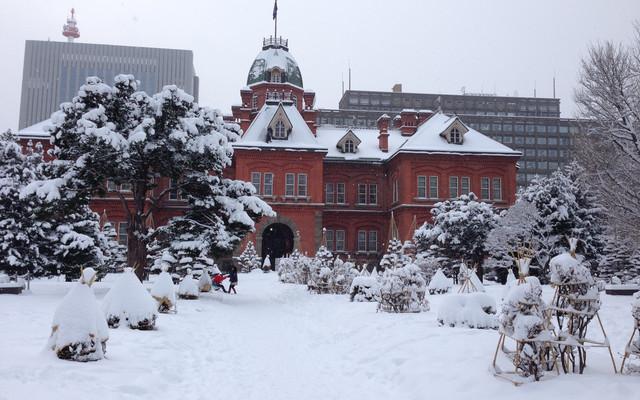 北海道-白色童话世界里的浪漫穿行