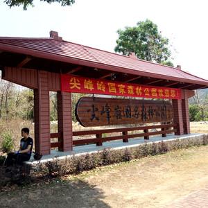 尖峰岭游记图文-骑游记之乐东县尖峰岭国家森林公园