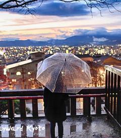 [京都游记图片] 漫步关西-日本深度自由行-大阪-京都-奈良-三重-城崎-白滨