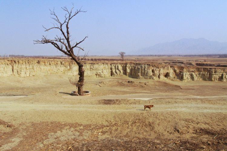 Kaiyang Ancient Castle2