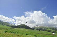 新疆天山小环线+喀纳斯+天山天池12天游(7天自驾+2天包车)