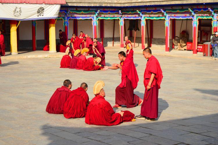Kumbum Monastery4