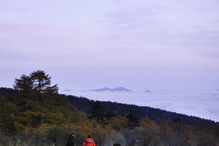Qinling Mountains1