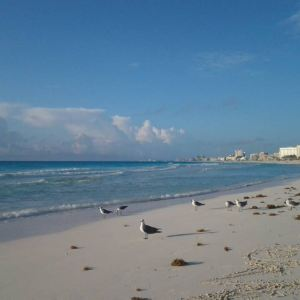 卡门海滩旅游景点攻略图