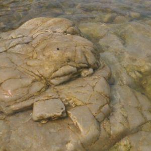 大黑山岛旅游景点攻略图
