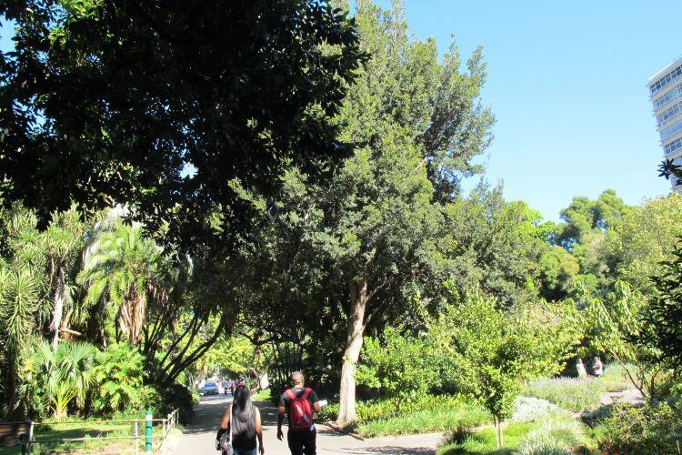 街心花園4
