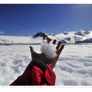 南极洲游记图文-南极奇幻之旅:走到世界的尽头