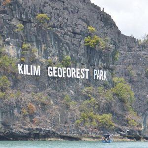 红树林生态保护区旅游景点攻略图