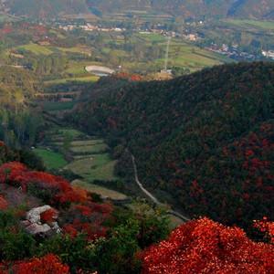 宜阳游记图文-一个人的周末踏青宜阳花果山爬山之旅