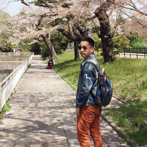 八户游记图文-一个人,本州岛东北部,春。