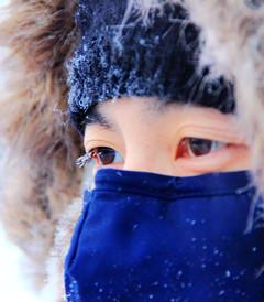 [哈尔滨游记图片] 旅行日记之哈尔滨漠河亚布力雪乡吉林(东北10日游)