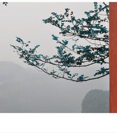 [利川游记图片] 【恩施·鱼木寨】被遗世的千年古寨