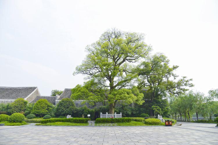 八大山人紀念館3