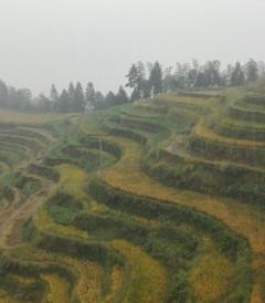 [新化游记图片] 新化国庆风雨三日游