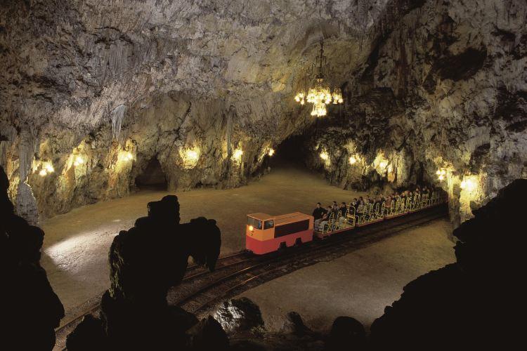 波斯托伊納溶洞4