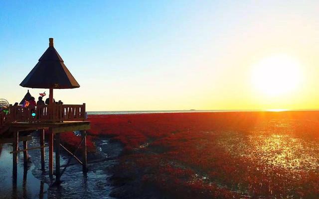 一场说走就走的旅行 4天3晚 北京-笔架山-红海滩-兴城古城带娃自驾游