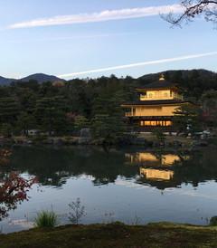 [日本游记图片] 日本11日从北海道到东京大阪的JR穿梭之旅(内含大量实用信息滑雪+购物+交通)