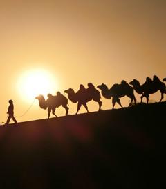 [西安游记图片] 【丝路西行】从千年古都到大漠飞沙