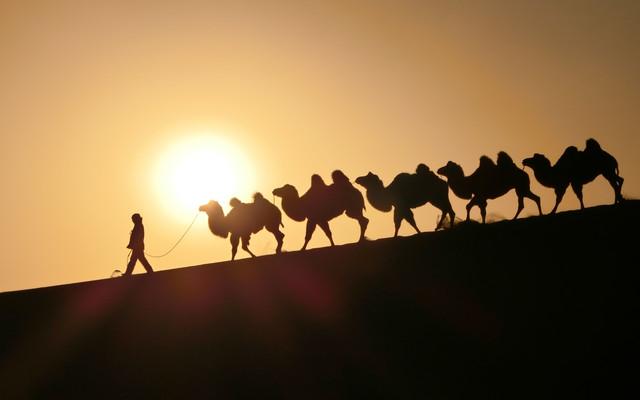 【丝路西行】从千年古都到大漠飞沙