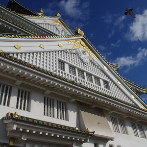神户游记图文-独行在路上,意外的日本红叶之旅(含红叶季交通、景点等资讯)
