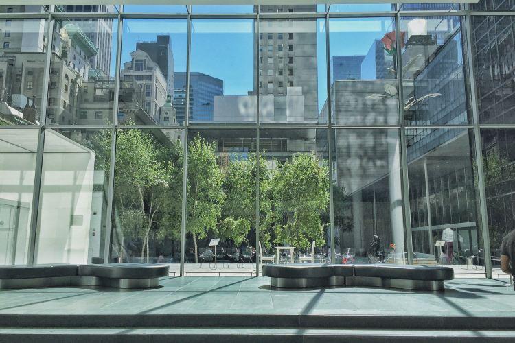 New York Museum of Modern Art1
