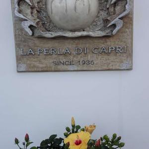 卡普里游记图文-卡布里岛(capri)