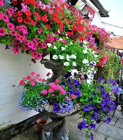[英国游记图片] 英国西部科茨沃尔兹乡村--美轮美奂的田园诗画
