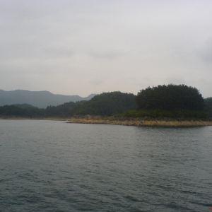神龙岛旅游景点攻略图