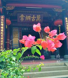 [晋江游记图片] 新旧老街区-晋江五店市