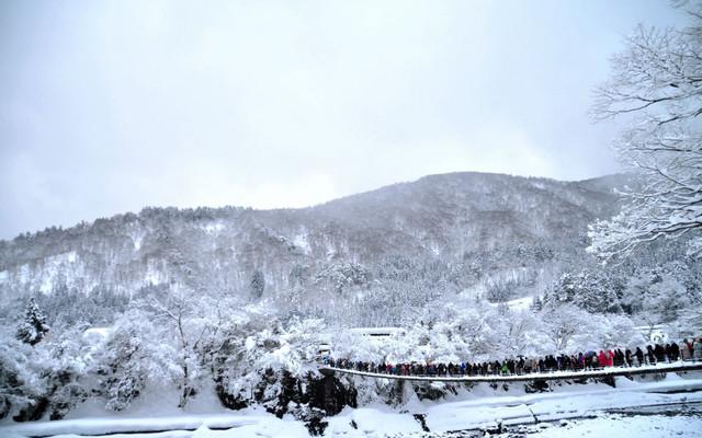 浪漫冬季~发现日本不一样的美