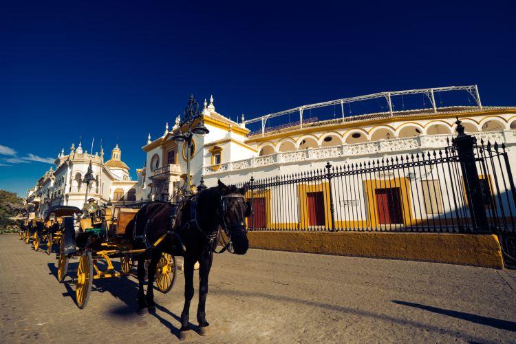 Plaza de toros de la Real Maestranza de Caballería de Sevilla4