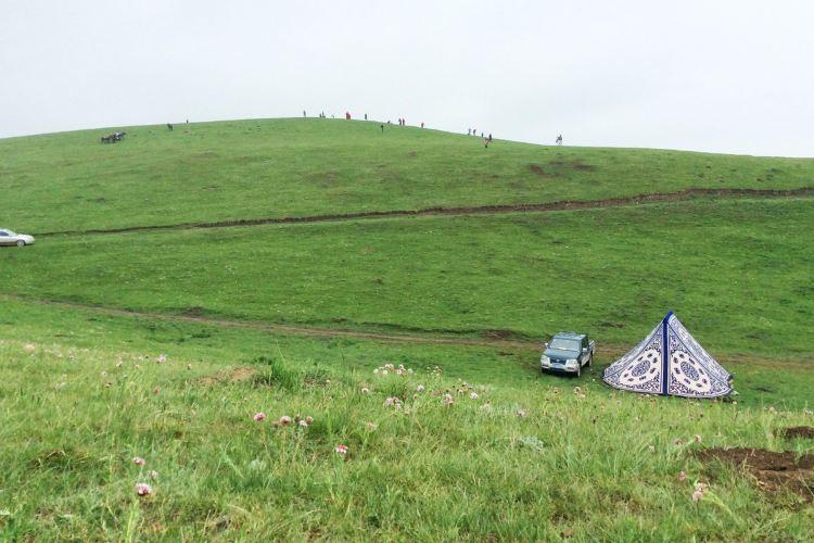 甘加草原2