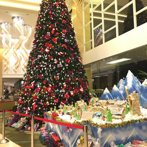 雅加达游记图文-爱在圣诞前,与雅城不期而遇(含万隆,吃地道美食,叹Spa)