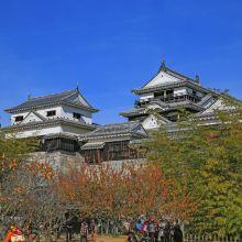 爱媛县图片
