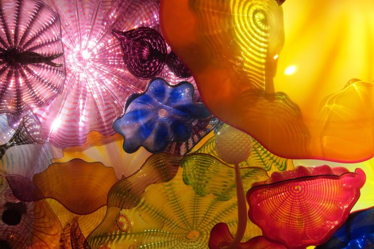 Chihuly Garden and Glass4