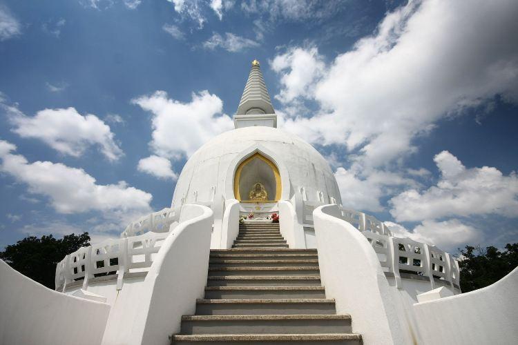 Peace Pagoda1