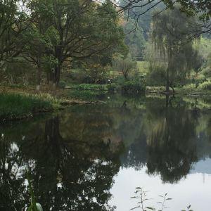 南郊公园旅游景点攻略图
